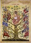 Fiche N° 25 : Jésus est la vraie vigne (Jn 15,1-17)