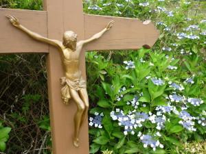 Crucifix, Forêt de Bélouve, Réunion