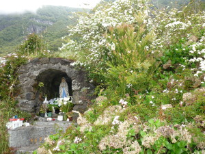 Marie Forêt de Bélouve la Réunion