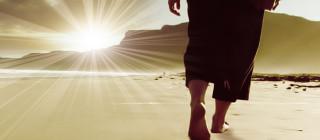 3ème Dimanche de l'Avent par le Diacre Jacques FOURNIER