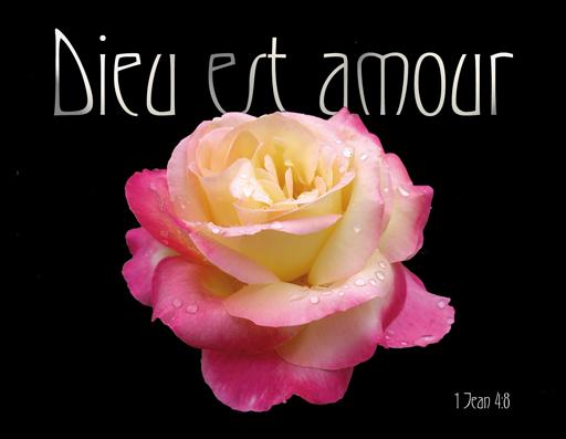 Michel blogue/''Le silence,la nature,les roses,une rencontre avec Dieu'' Dieu-est-amour-2
