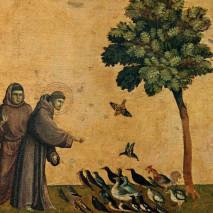 Du bon usage des biens de ce monde (Luc 11,37-12,34)