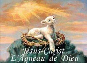 « Pourquoi dit-on que Jésus est l'Agneau de Dieu ? »