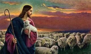 16ième dimanche du temps ordinaire par P. Claude TASSIN (Spiritain)
