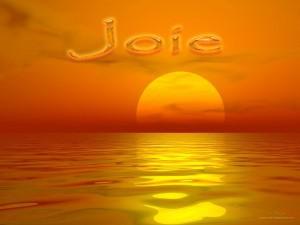 joie-300x225