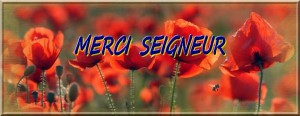 merci_16