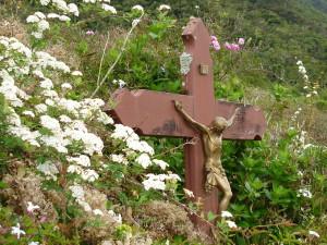 Christ Forêt de Bélouve Réunion 3