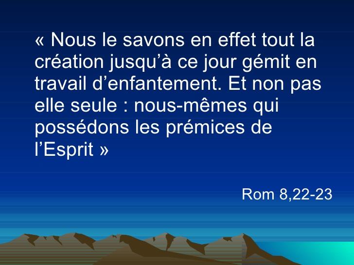 L'Ascension – Homélie du Frère Daniel BOURGEOIS, paroisse  Saint-Jean-de-Malte (Aix-en-Provence) - Sedifop