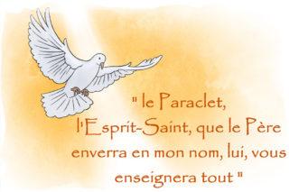 « L'Esprit Saint est Seigneur, et il donne la vie » (D. Jacques FOURNIER).