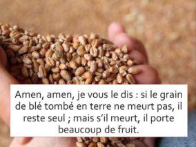 5ième Dimanche de Carême – par le Diacre Jacques FOURNIER (Jean 12, 20-33)