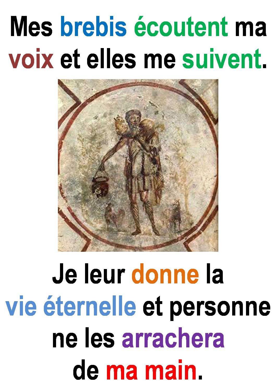 4ième Dimanche de Pâques ( Jean 10, 27-30) :  «Mes brebis écoutent ma voix … et elles me suivent.» (Francis Cousin)