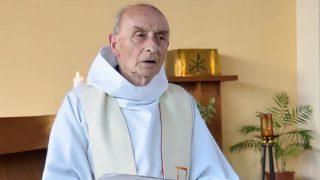 33ième Dimanche du Temps Ordinaire – par Francis COUSIN (St Luc 21, 5-19)
