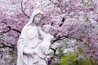 «SOUVENEZ-VOUS, ô très miséricordieuse Vierge Marie »