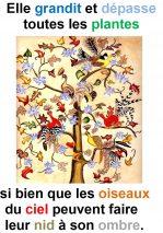 11ième Dimanche du Temps Ordinaire (Mc 14, 26-34) – Francis Cousin